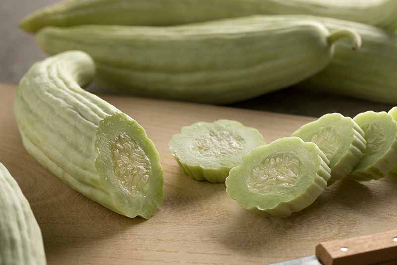 A close up horizontal image of light colored Armenian cucumbers, some whole and one sliced, set on a wooden surface.