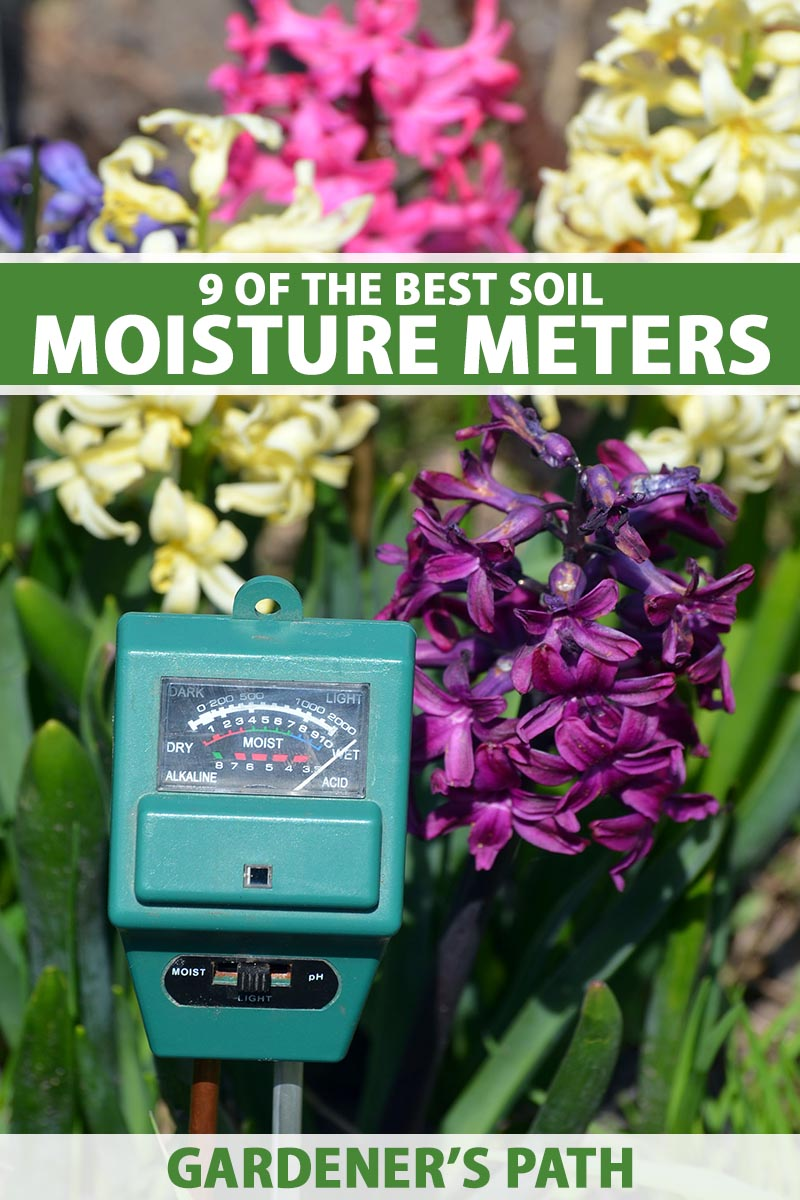 A close up vertical image of a soil moisture meter with hyacinth flowers in the background pictured in bright sunshine. To the top and bottom of the frame is green and white printed text.