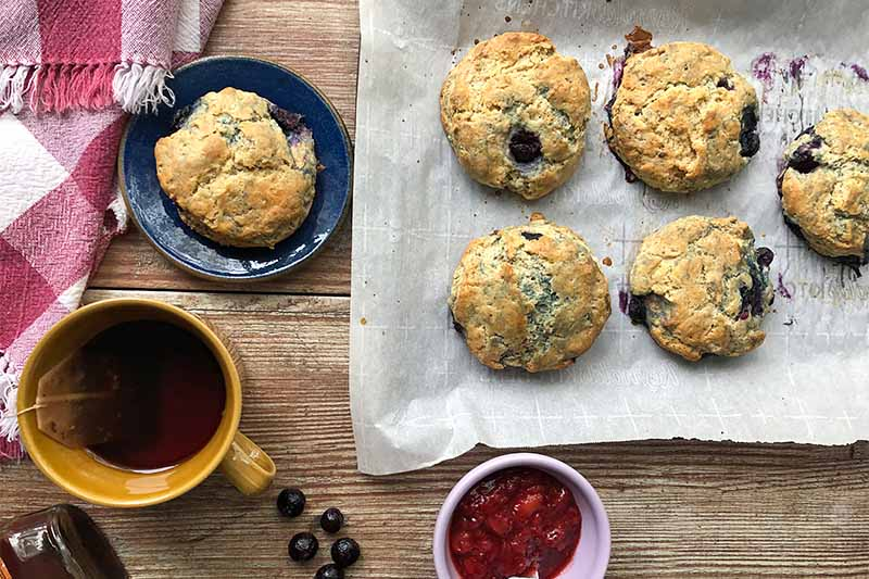 A top down horizontal image of freshly baked scones set on a sheet of baking paper with a cup of tea and jam to the left of the frame.