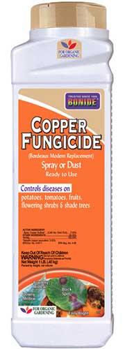 A close up vertical image of a plastic bottle of Bonide Copper Fungicide isolated on a white background.