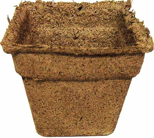 A close up horizontal image of a biodegradable pot for starting seeds.