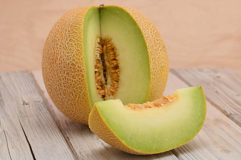 A close up horizontal image of a gallia melon with a slice cut out of it set on a wooden surface pictured on a soft focus background.