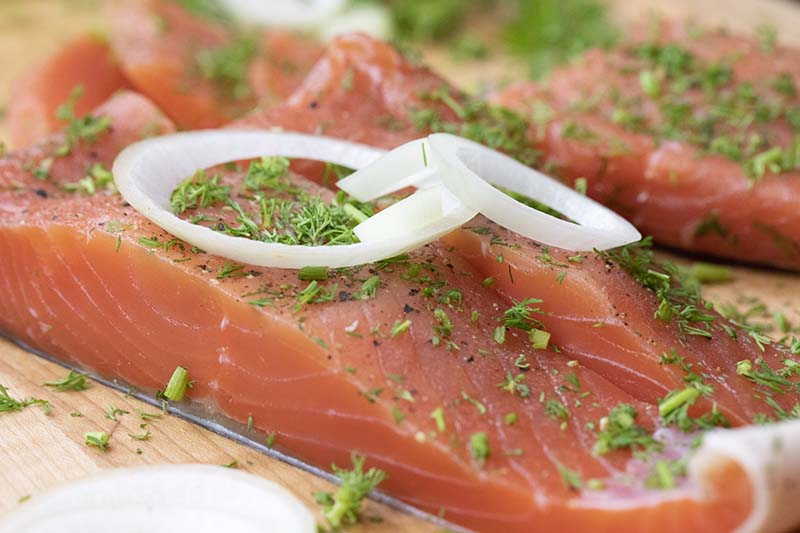 A close up horizontal image of homemade gravadlax topped with herbs and onion rings.
