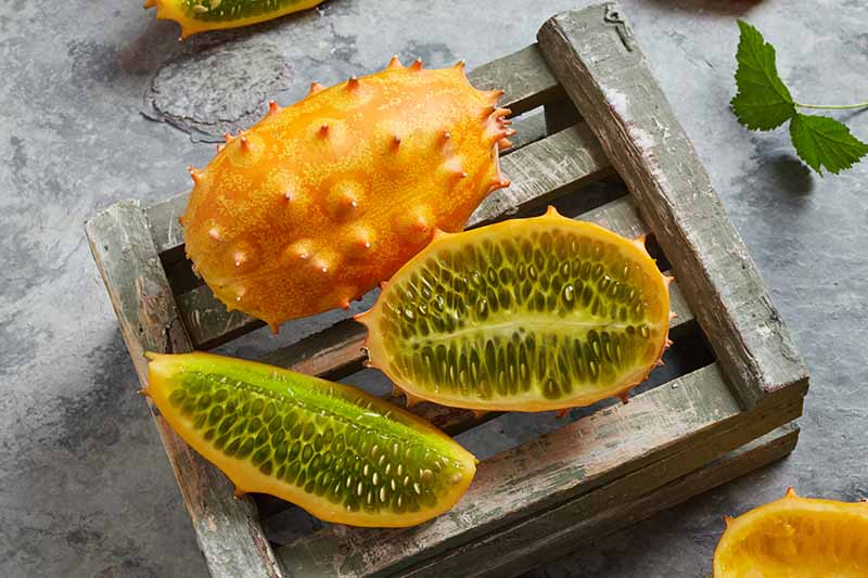 A close up horizontal image of Kiwano fruits, one whole and one cut in half set on a wooden crate.