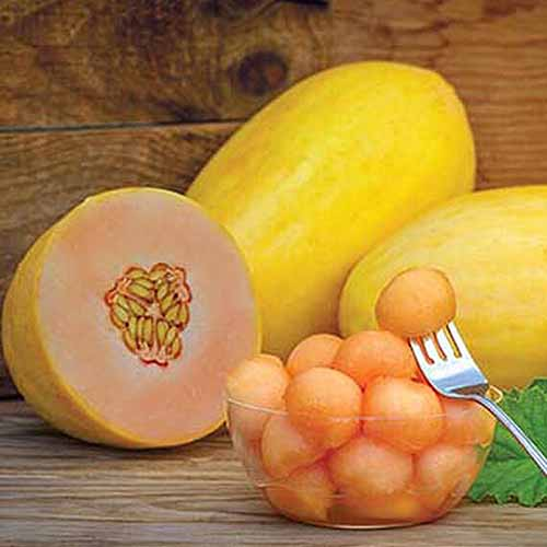 A close up square image of a 'Mango' melon cut in half, to the left of the frame is balls in a glass bowl, and two intact fruits in the background.