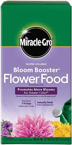 A close up vertical image of the packaging of Miracle-Gro Bloom Booster Flower Food.