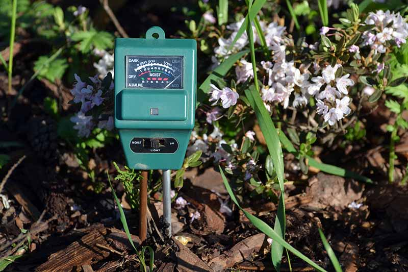 A close up horizontal image of a soil test meter set into the soil of a garden border with vegetation and flowers in soft focus in the background.