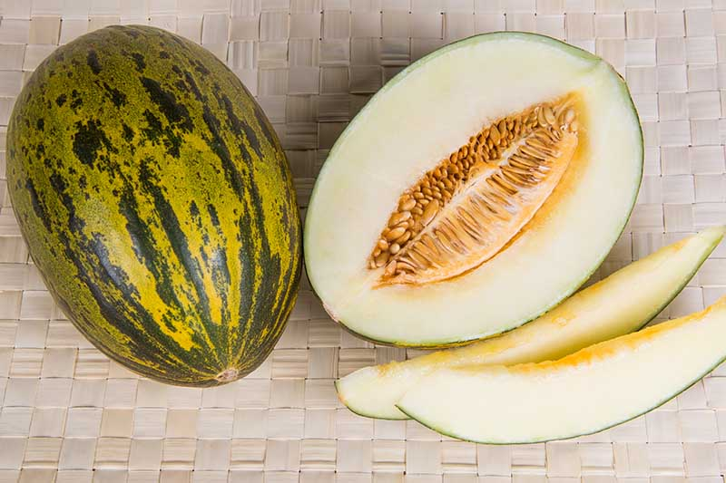 A horizontal image of two Cucumis melo 'Piel de Sapo' fruits set on a wicker surface, one whole and one cut into slices.
