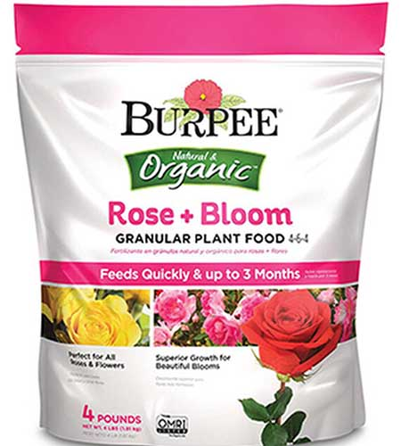 A close up square image of the packaging of Burpee's Rose and Bloom Granular Plant Food isolated on a white background.