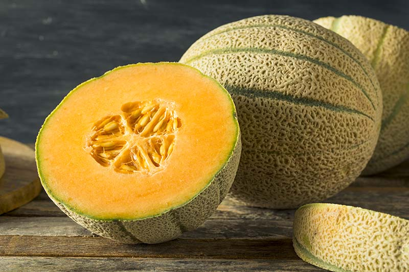 A close up horizontal image of whole and cut muskmelons set on a wooden surface pictured on a soft focus background.
