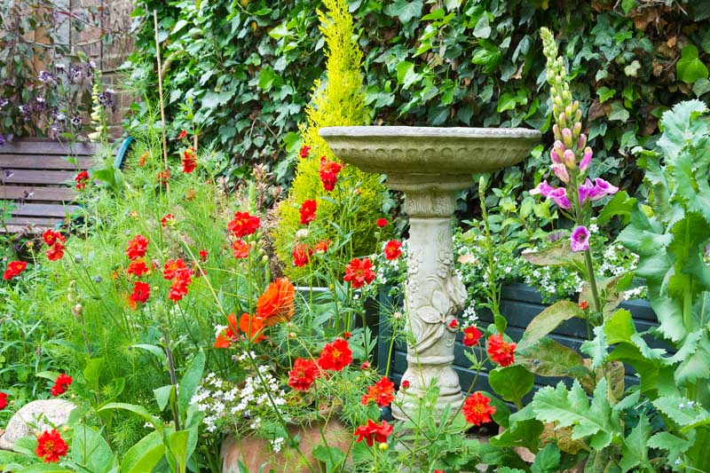 A stone birdbath becomes the focal point in an area of a large cottage garden.