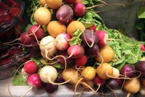 25 of the Best Radish Varieties for Your Veggie Garden