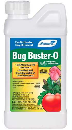 A close up vertical image of a plastic bottle of Monterey Bug Buster-O isolated on a white background.