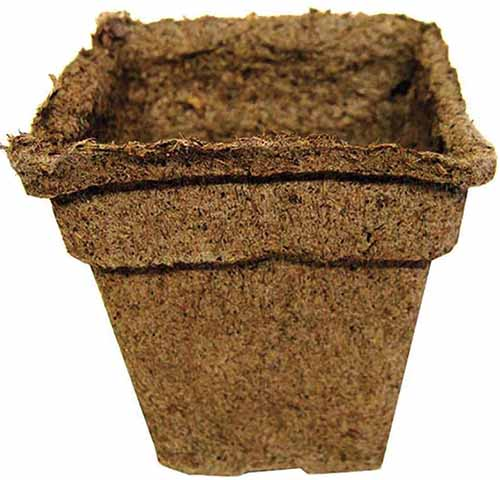 A close up square image of a biodegradable pot for starting seeds at home.