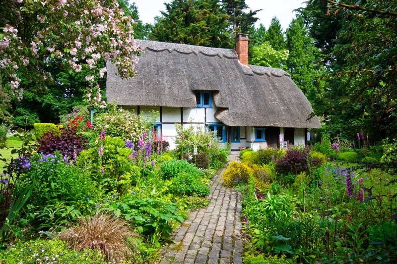 Cottage garden with center pathway leading to a rustic style Tudor home with a thatched roof.