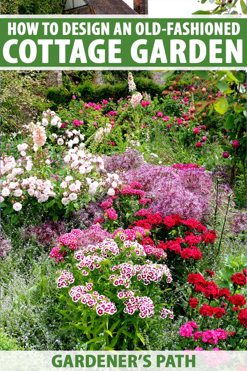 A cottage garden with many types of perennial flowers in bloom.