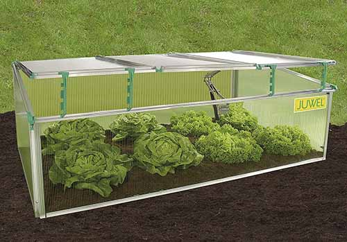 A close up horizontal image of a cold frame for growing vegetables set against a garden background.