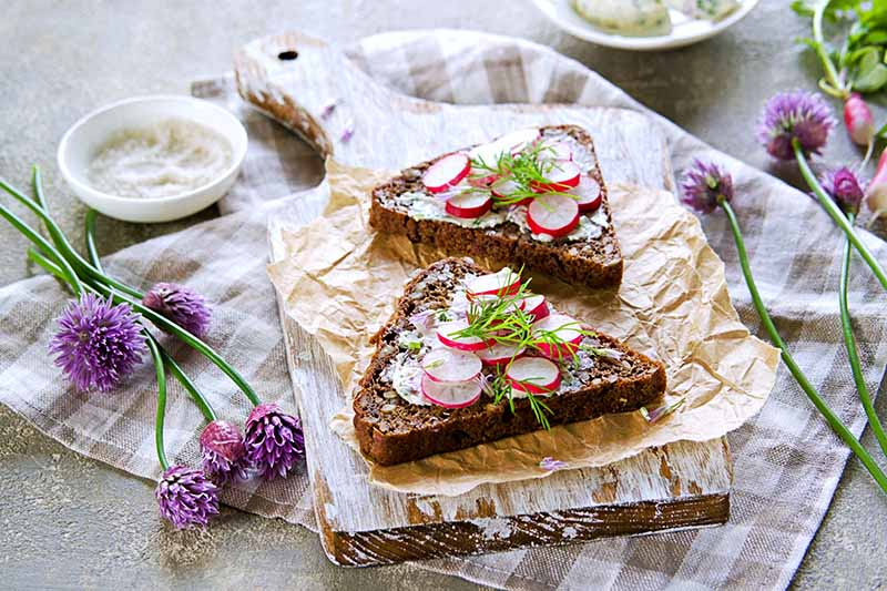 A close up horizontal image of slices of dark toast topped with cheese and radishes set on a wooden surface.