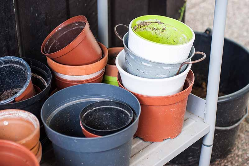 A close up horizontal image of a selection of different plant pots placed on a shelf in the backyard.