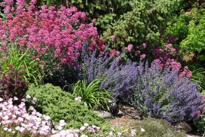 Your Guide to Low-Maintenance Landscape Planning