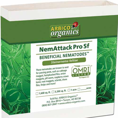A close up square image of the packaging of NemAttack Steinernema feltiae Beneficial Nematodes isolated on a white background.
