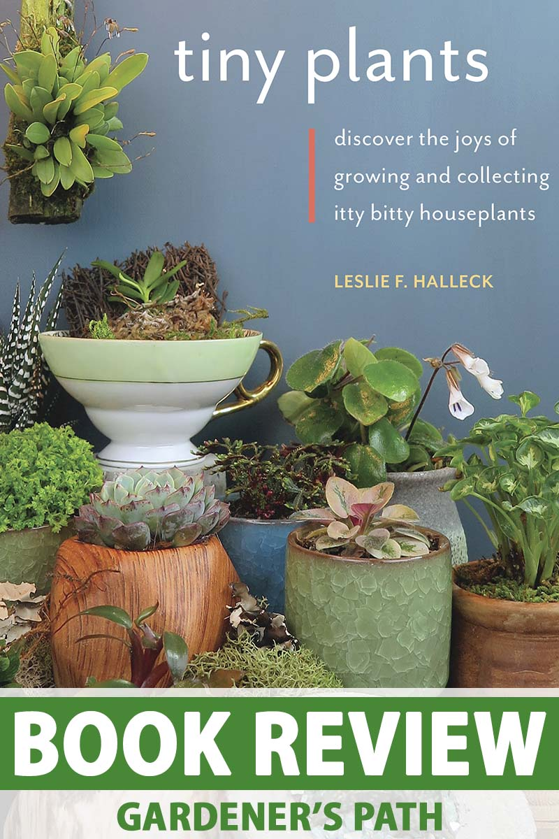 """A close up vertical image of the cover of the book """"Tiny Plants: Discover the Joys of Growing and Collecting Itty Bitty Houseplants."""" To the bottom of the frame is green and white printed text."""