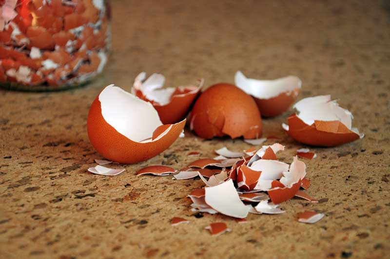 A horizontal image of crushed egg shells on a cork surface.