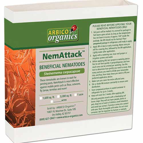 A close up square image of the packaging of NemAttack beneficial nematodes (Steinernema carpocapsae) isolated on a white background.