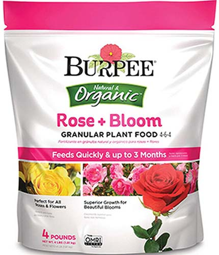 A close up square image of the packaging of Burpee Rose and Bloom Granular Plant Food isolated on a white background.