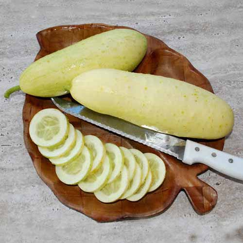 A close up square image of sliced and whole 'White Wonder' cucumbers on a wooden chopping board.