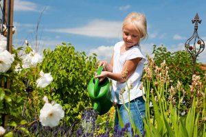 How to Design a Child's Garden