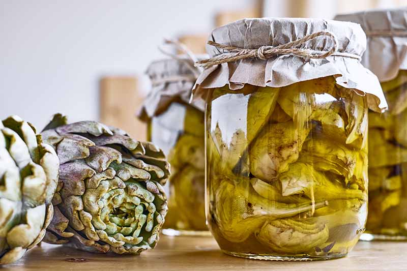 A close up horizontal image of a jar of preserved artichoke hearts set on a wooden surface.
