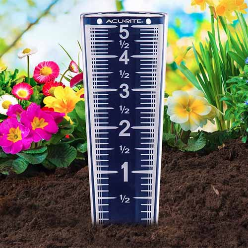 A close up square image of a rain gauge set out in the garden.