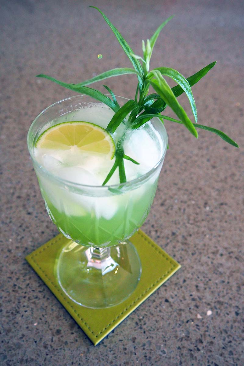 A close up vertical image of a fresh summer spritzer with a slice of lemon and a sprig of tarragon set on a light green coaster.