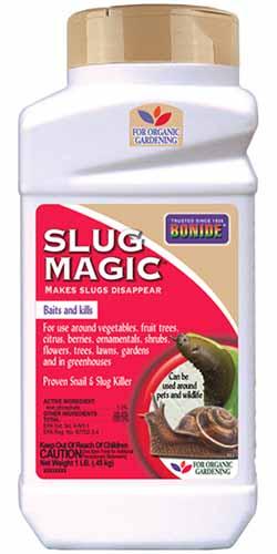 A close up vertical image of a plastic bottle of Bonide Slug Magic isolated on a white background.