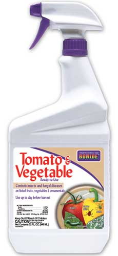 A close up vertical image of a spray bottle of Bonide Tomato and Vegetable Spray isolated on a white background.