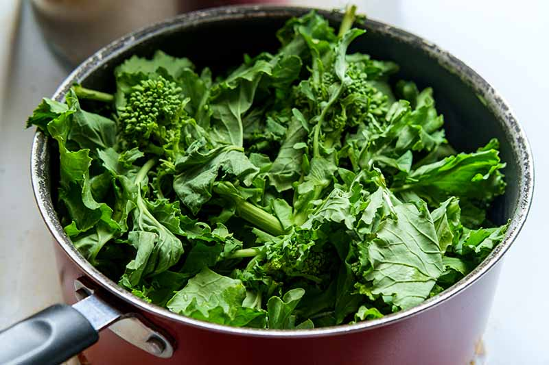 A close up horizontal image of a saucepan filled with freshly harvested rapini.