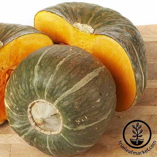 A close up square image of 'Burgess Buttercup' squash, sliced and whole, set on a wooden surface. To the bottom right of the frame is a black circular logo with text.