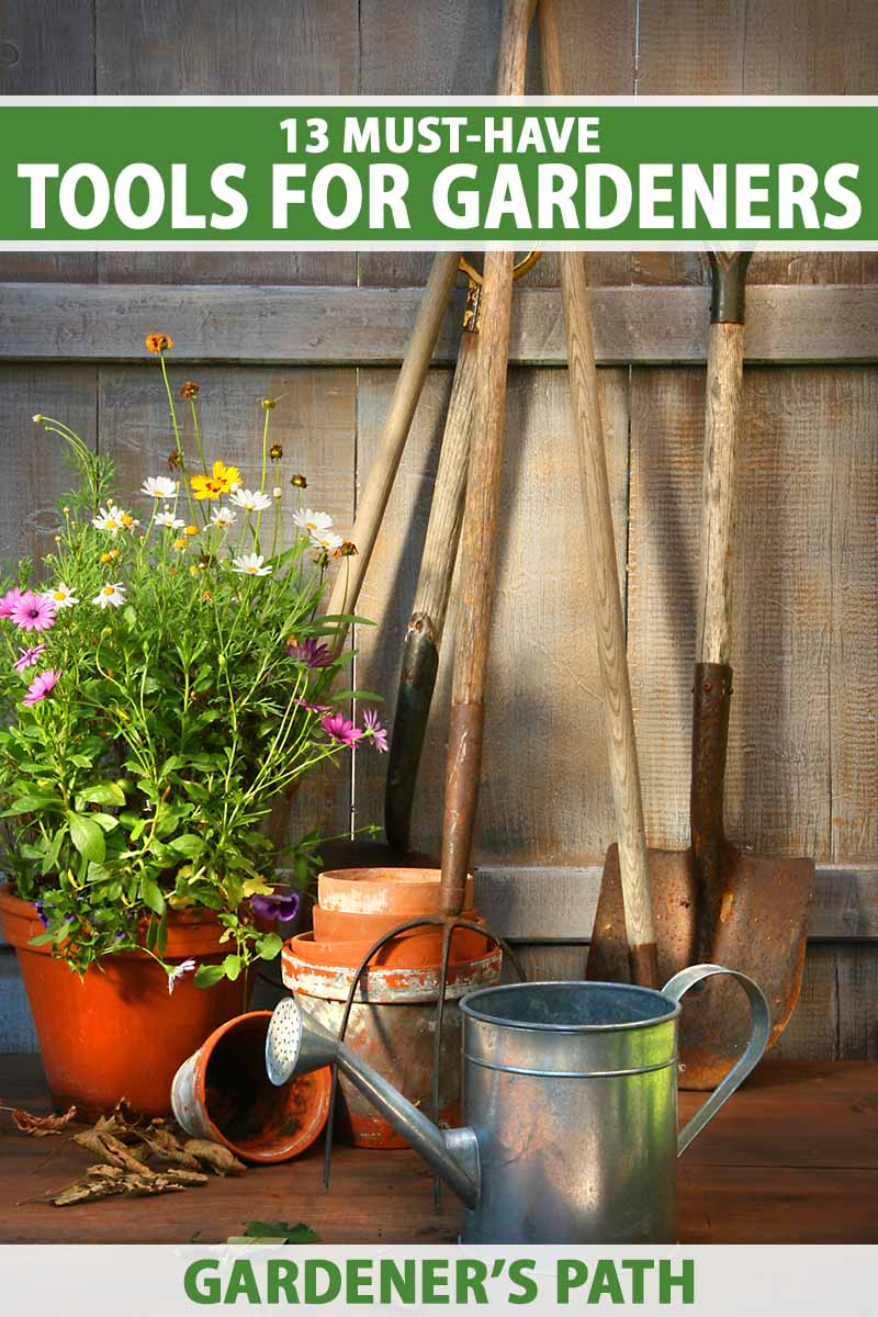 A close up vertical image of a selection of garden tools with a potted plant and a metal watering can in a wooden shed. To the top and bottom of the frame is green and white printed text.