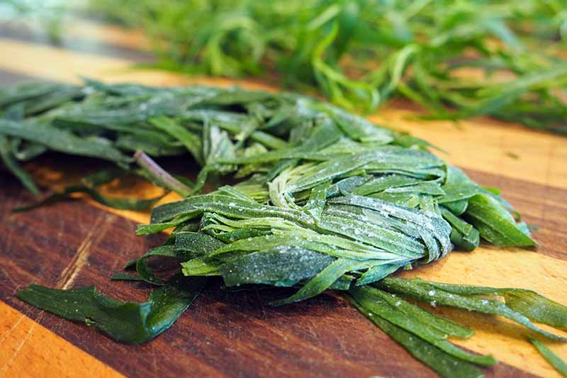 A close up horizontal image of frozen tarragon set on a wooden chopping board.