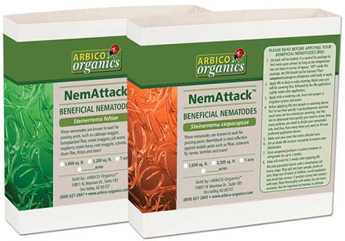 A close up horizontal image of two boxes of NemAttack Beneficial Nematodes isolated on a white background.
