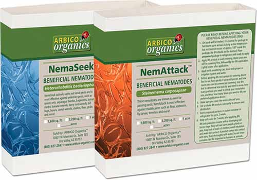A close up horizontal image of two boxes of Beneficial Nematodes in the brand name NemAttack and NemaSeek isolated on a white background.