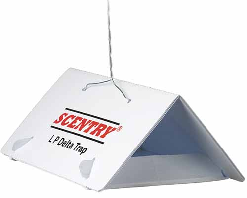 A close up horizontal image of a Scentry Pheromone Lure trap isolated on a white background.