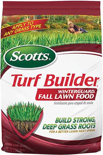 A close up vertical image of a bag of Scotts Turf Builder Winterguard Fall Lawn Food isolated on a white background.