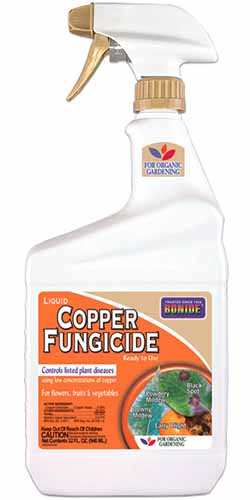 A close up vertical image of a ready to spray bottle of Bonide Copper Fungicide isolated on a white background.