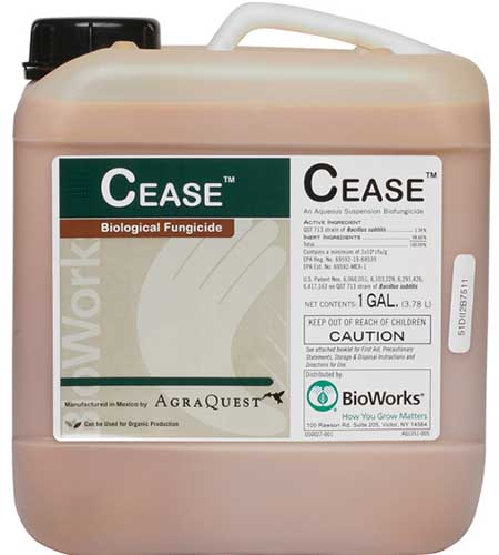 A close up square image of the packaging of CEASE biological fungicide isolated on a white background.