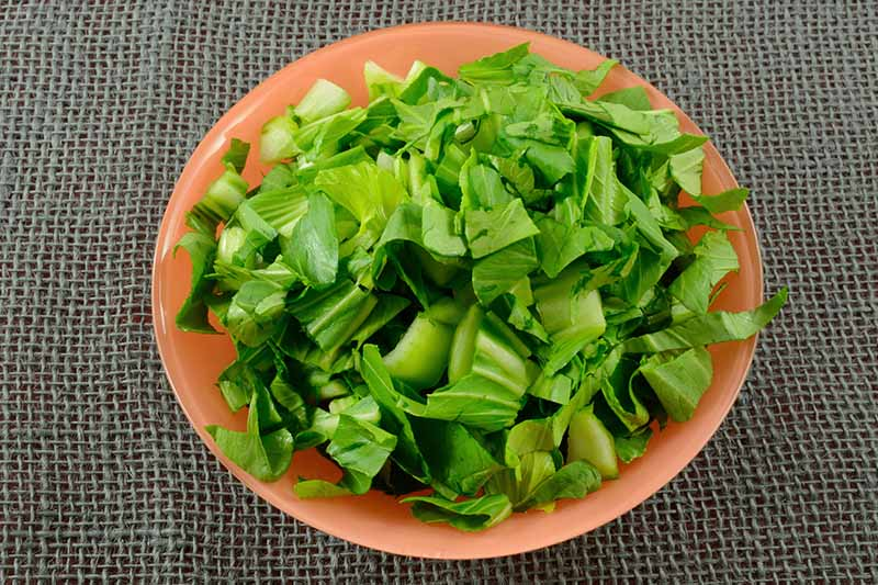 A close up horizontal image of a bowl filled with freshly rinsed raw shredded bok choy set on a burlap surface.