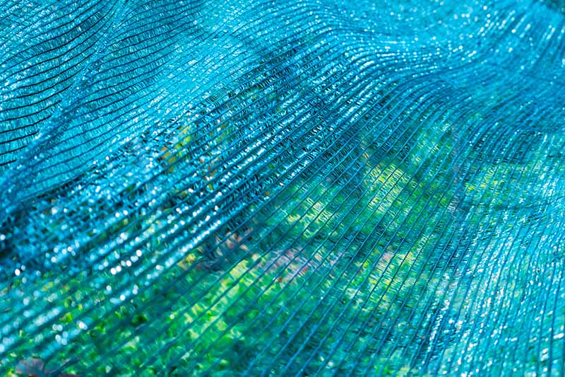 A close up horizontal image of a garden bed covered with light blue shade netting.