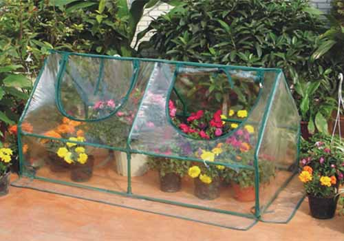 A close up horizontal image of a plastic greenhouse cloche covering flowers in pots on the patio.