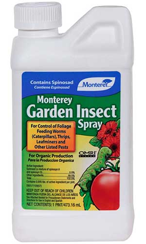 A close up vertical image of the packaging of Monterey Garden Insect Spray isolated on a white background.